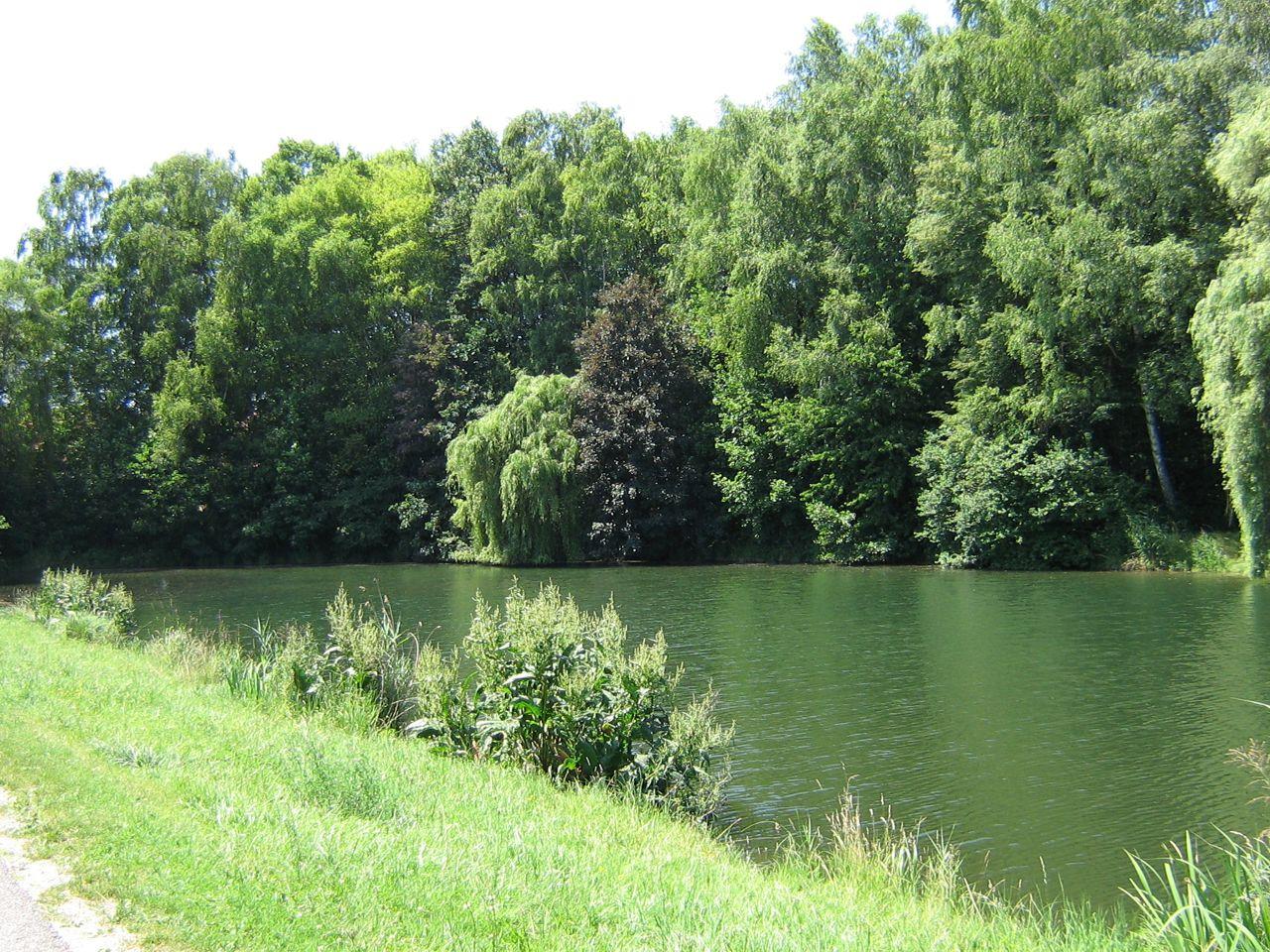 Grauelsbaum See